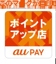 Au pay ガソリン スタンド